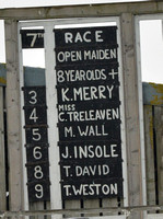 Race 7 The 8 Y.O. and over Open Maiden Race