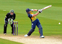 Birmingham Bears v Worcestershire Rapids t20 July 11th 2014