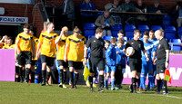 Stratford Town v Fleet Town March 1st 2014