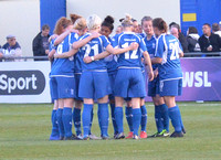 Birmingham City Ladies v Everton Ladies April 16th 2014